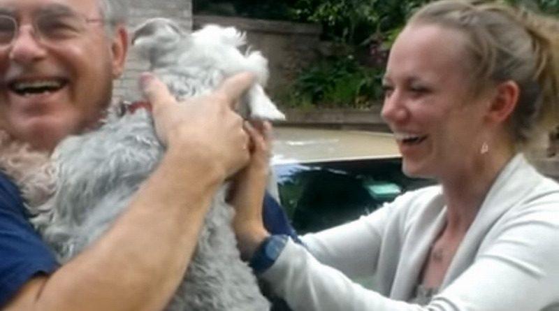 2年ぶりにご主人様に再開して大興奮のシュナウザー犬、あまりにも興奮しすぎた結果…