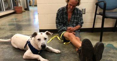 ホームレスの男性が親友の犬と感動の再会