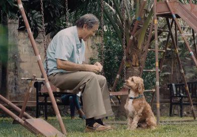 助けた犬と親友になった男性と、迷子犬を探す家族の感動の物語(フィリピンCM)