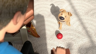 遊んで欲しそうな子犬